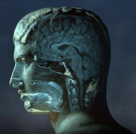 "SCE Dean Robert Kirkbride Featured on PBS Documentary ""Mysteries of Mental Illness"""